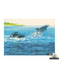 Tuftop Glass Chopping Board in Into The Blue (dolphins swimming) Design